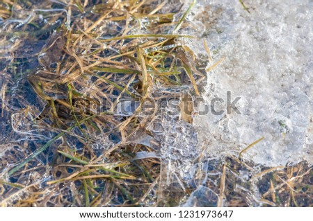 background texture pattern. Ice out of the water. abundant on the surface of the Earth - especially in the polar regions and above the snow track and as a usual form of precipitation and precipitation #1231973647