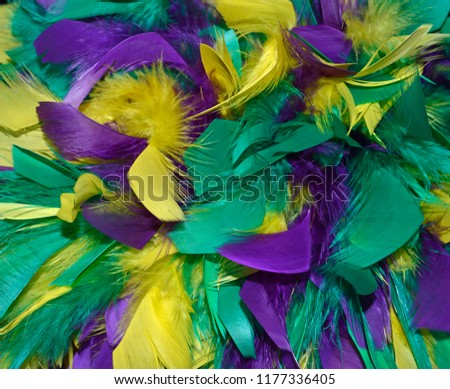 Background texture photo of Mardi Gras feathers