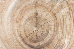 background texture surface splat wooden