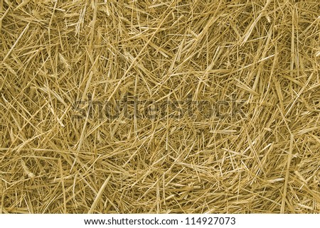 Background. The natural texture of dry straw