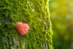 Background with a closeup of a birch trunk with a red heart. A tree with moss in the forest as a symbol of ecology, love and respect for nature