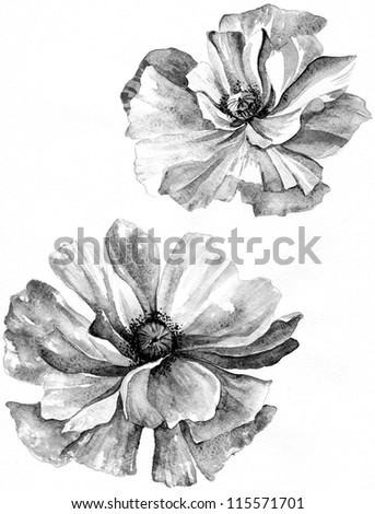 background with a flowers