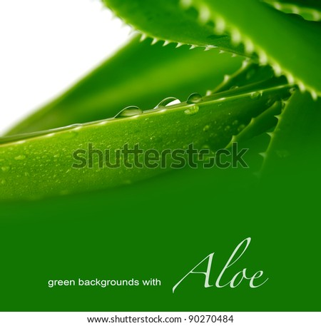 background  with aloe
