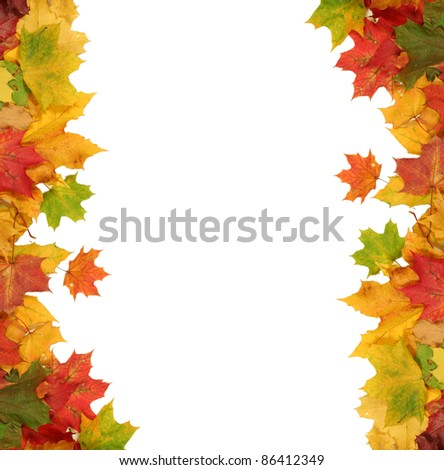 background with bright autumn leaves