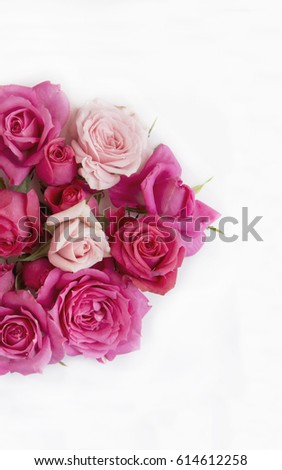 Background with floral decoration of natural roses