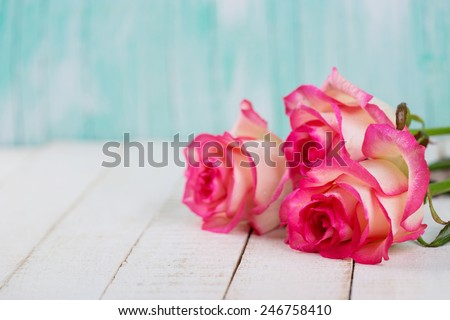 Background with fresh flowers and empty place  for your text. Roses on white wooden table. Selective focus is on right rose.
