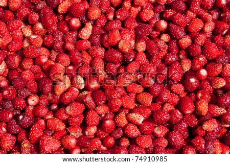 Background with fresh red strawberries - stock photo
