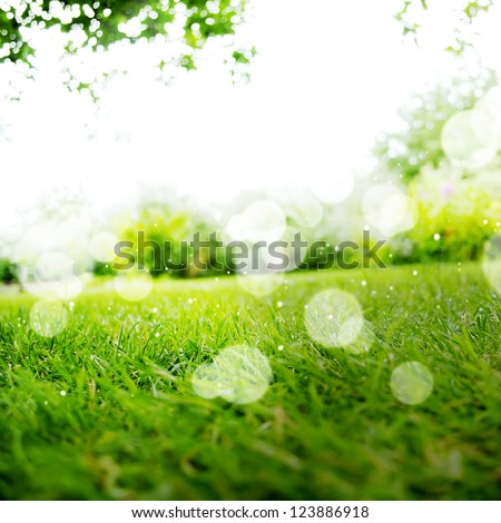Background with Green Summer Landscape