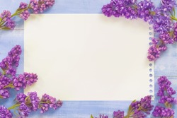 background with lilac branches and a sheet of paper for text. sheet for recording and frame with branches of lilac. spring background with branch of lilac.