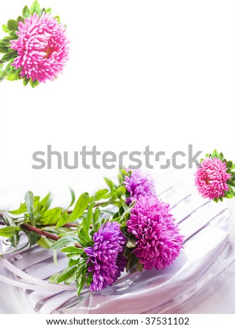 Background with lyings on a womanish bag asters, much place is for inscriptions