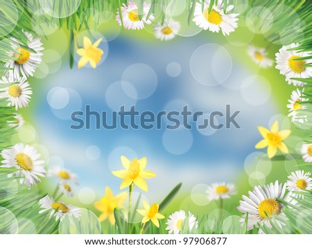 Background with meadow, daisies and daffodils