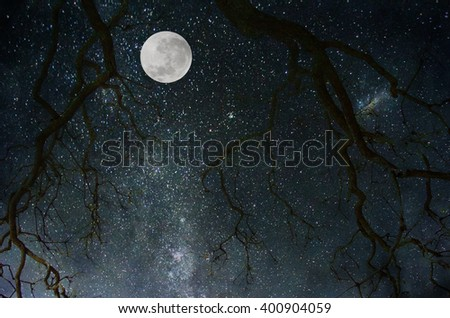 Background with moon.
