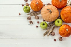 Background with pumpkins, nuts, apples and ears of wheat on a white wooden boards. Space for text. View from above.