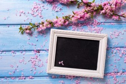 Background  with  sakura pink flowers  and empty blackboard on blue wooden planks. Selective focus. Place for text.