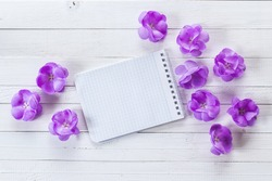 Background with violet flowers and empty notebook for text on white painted wooden planks. Place for text. Top view with copy space