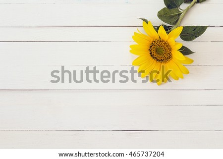 Background with yellow sunflower on a white painted wooden boards. Space for text.