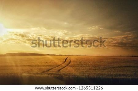 backgrounds adventure atmosperic #1265511226