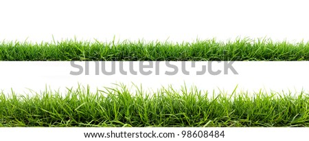 backgrounds of fresh spring green grass Isolated On White - Shutterstock ID 98608484