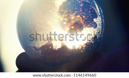 backlighted snowglobe with meeting of two dogs. Dogs romantic. Autumn dreams