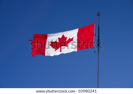 Backlit Canadian flag waving in the wind