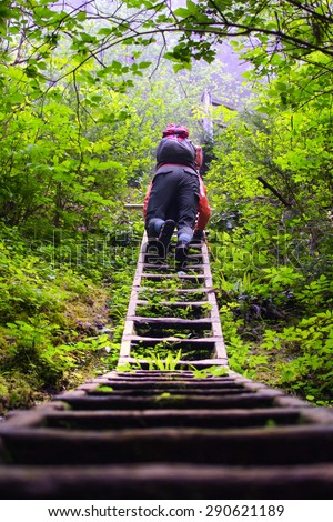 Backpacker climbing up a ladder on West Coast Trail in the woods of Pacific Rim National Park, British Columbia