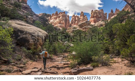 Backpacker hiker in trek walk hiking backpacking  man adventure fitness Canyonlands National Park Chesler Park desert southwest rock formations geology the needles landscape photography joint trail