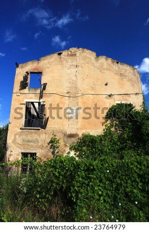 backside of an old abandoned burnt down farmhouse in italy, plants are growing over it