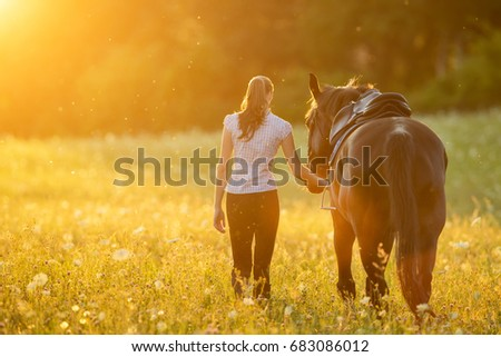 Backview of young woman walking with her horse in evening sunset light. Outdoor photography with fashion model girl.