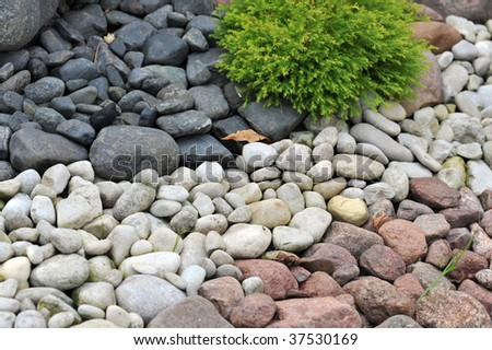 backyard decorated with different stones