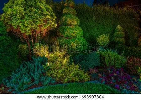 Backyard Garden Led Lighting Illumination. Beautiful Garden Illuminated by Small Spot Light Led Reflectors.