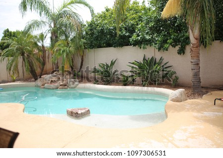 backyard pool oasis with palm trees #1097306531