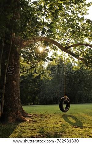 Backyard Tire Swing #762931330