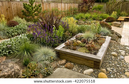 Backyard with fantastic landscaping, patio, fence and raised bed, drought resistant plants