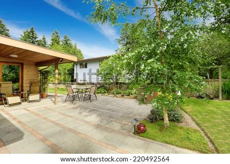 Backyard with walkout patio. Birch tree growing on backyard area