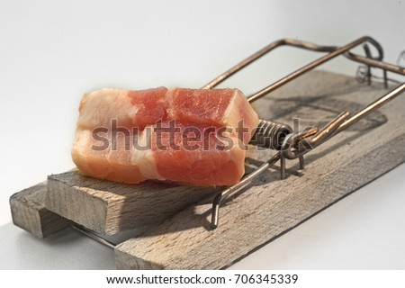 Bacon on a mousetrap as a symbol of attracting attractants. Good bait catches mice. #706345339