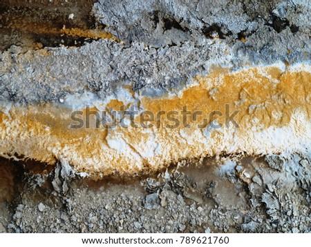 Bacteria and precipitates - Yellowstone National Park #789621760