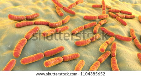 Bacteria Lactobacillus, 3D illustration. Normal flora of small intestine, lactic acid bacteria. Probiotic bacterium