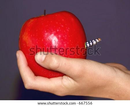 Bad apple for the teacher