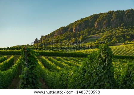 Badacsony hill in Hungary, Balaton at the year of 2019 Stock photo ©