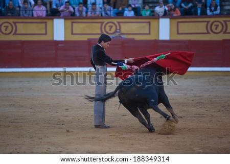 BADAJOZ, SPAIN, APRIL 12: The spanish torero Gines Marin performing a bullfight, on April 12, 2014 in Badajoz, Spain