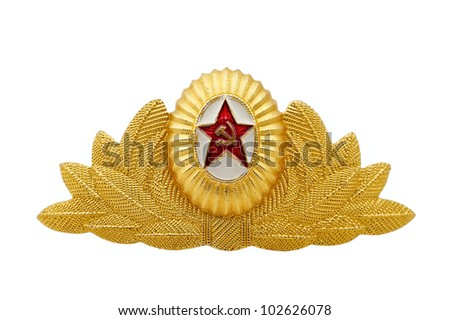 Badge of the expert of the officer of the Air Forces on a white background