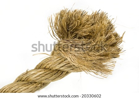 Badly frayed end of natural hemp rope with white background.