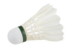 badminton ball in front of white background