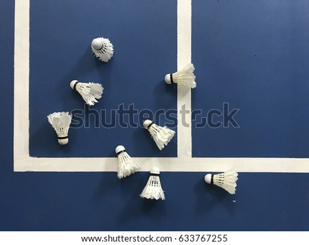 Badminton shuttlecock on blue court. Play badminton. Badminton shuttlecock on the floor. Badminton court. Concept sport , play, teamwork, motivation, attitude
