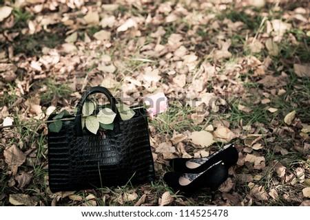 bag and rose