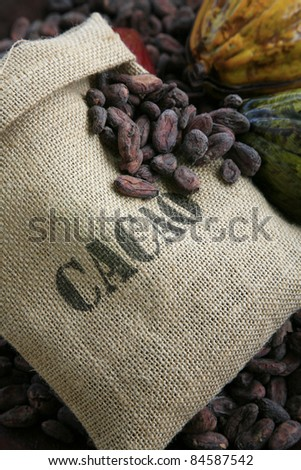 Bag of cocoa beans