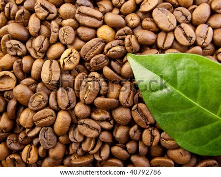Bag of Coffee Beans shot with a Coffee Leaf