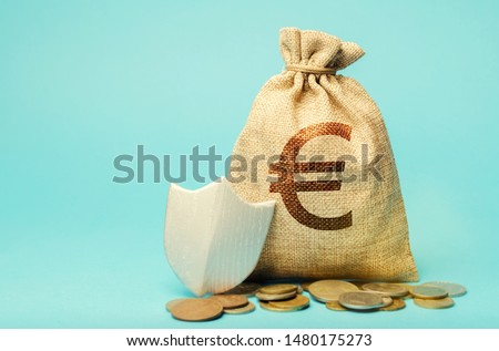 Bag with euro symbol and protection shield. Concept security of money, guaranteed deposits. Client rights protection. Compensation for losses in inflation, safeguarded investment capital.