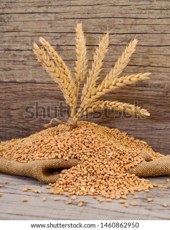 Wheat Bran Bag