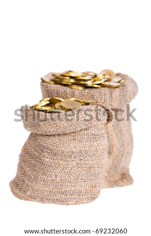 Bags filled with coins. A white background. Isolated.